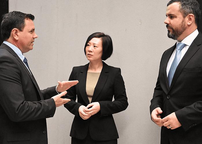 Team meeting in the Brisbane head office