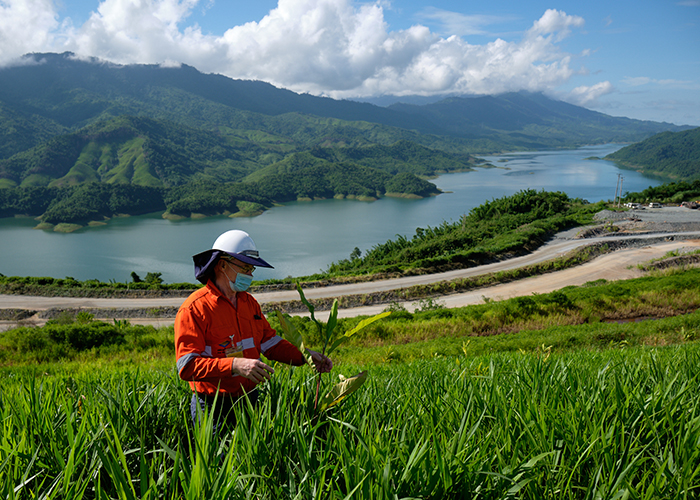 Revegetation activities at Ban Houayxai